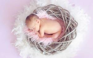 baby-784608_810