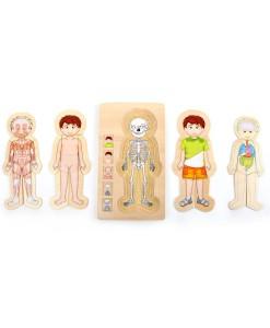 Legler drevene puzzle anatomie chlapec Tim b