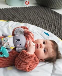Taf Toys koala Kimmy b